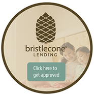Bristlecone Finance Side Ad